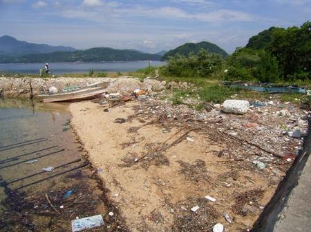 海岸清掃 (1)